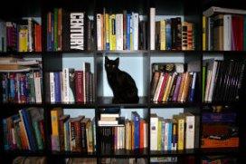 Deuren vermomd als boekenkasten in dementiezorg