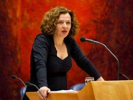 Schippers bekijkt komst interim-directeur Maasstad