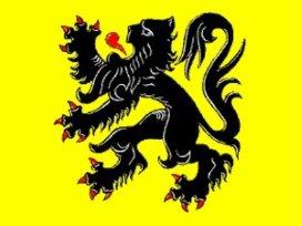 'Belgisch eHealth-platform is te Vlaams'