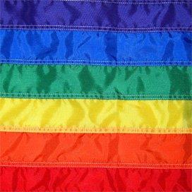 Cordaan vaart mee met Gaypride 2013