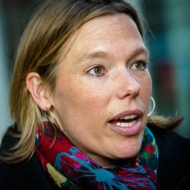 PvdA: 'Verzekeraars zijn woningcorporaties van de zorg'