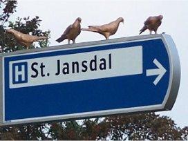 St. Jansdal kiest voor MyHealth Online