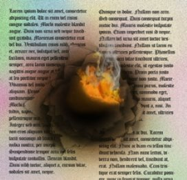 Vernietigend rapport zorggroep Charim