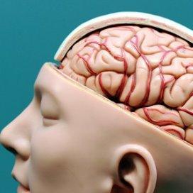 Hersenletsel: Thuis wonen onder begeleiding