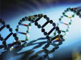 Erasmus MC zet Oracle's Exadata in voor DNA-onderzoek