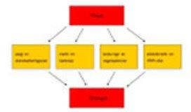 schema Westerlaken marketing en strategie