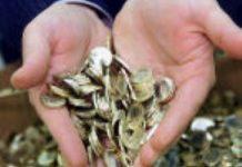 ZN: geld in AWBZ is op