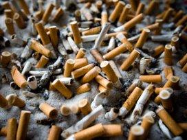 'Nederlanders gaan niet gezonder leven'