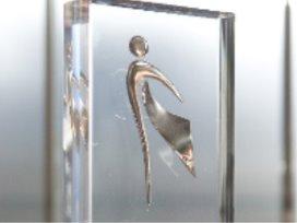 MSdagboek winnaar Spider Award 2010