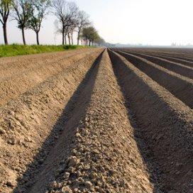 Aantal zorgboerderijen stijgt sterk in Brabant