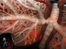 Zorgorganisatie kan COPD-keten declareren