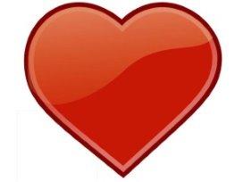 Fysicon lanceert cardiovasculair informatiesysteem