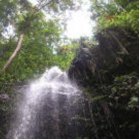 AWBZ-zorg outsourcen naar Suriname