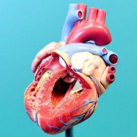Hartcentra geven openheid behandelresultaten hartpatiënten