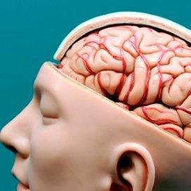 Doorbraak: medisch voedingsmiddel tegen dementie
