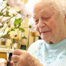 'Amper samenhang in zorgnetwerk ouderen'