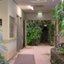 Foto's De Wintertuin in Amphia Ziekenhuis