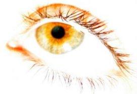 Samenwerking TeleMC en OVG houdt oogonderzoek lokaal