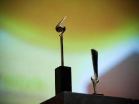 Zorgmanager en Talent van het Jaar 2012