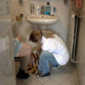 Buikgriep eist leven in verzorgingshuis Haren