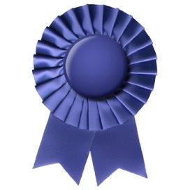 Top-100: McKesson grootste ict-zorg leverancier in VS
