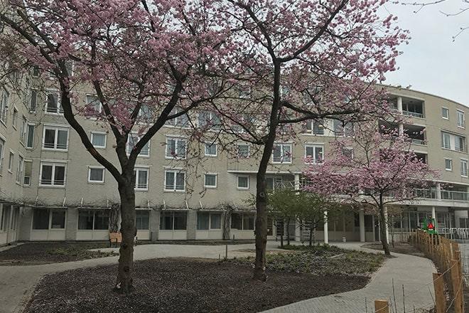 Cordaan wijkkliniek Amsterdam